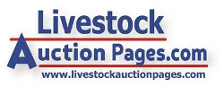 Livestock Auction Pages